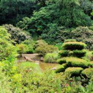 Le Parc Botanique de Haute Bretagne – a hidden gem.